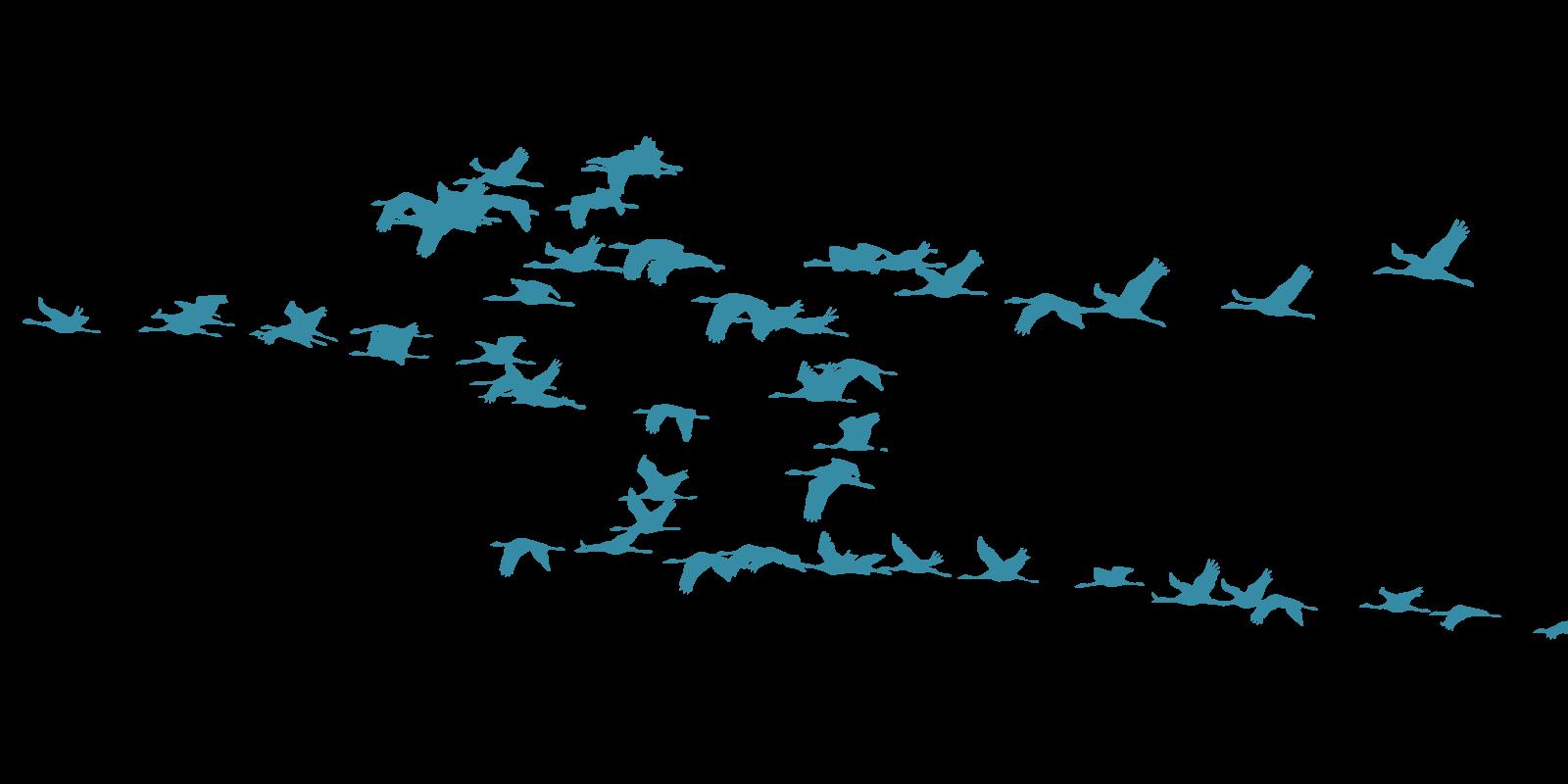 Blue Flock of Birds